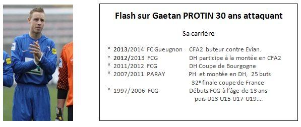 flash Protin