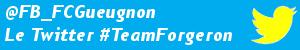 twitter_teamforgeron